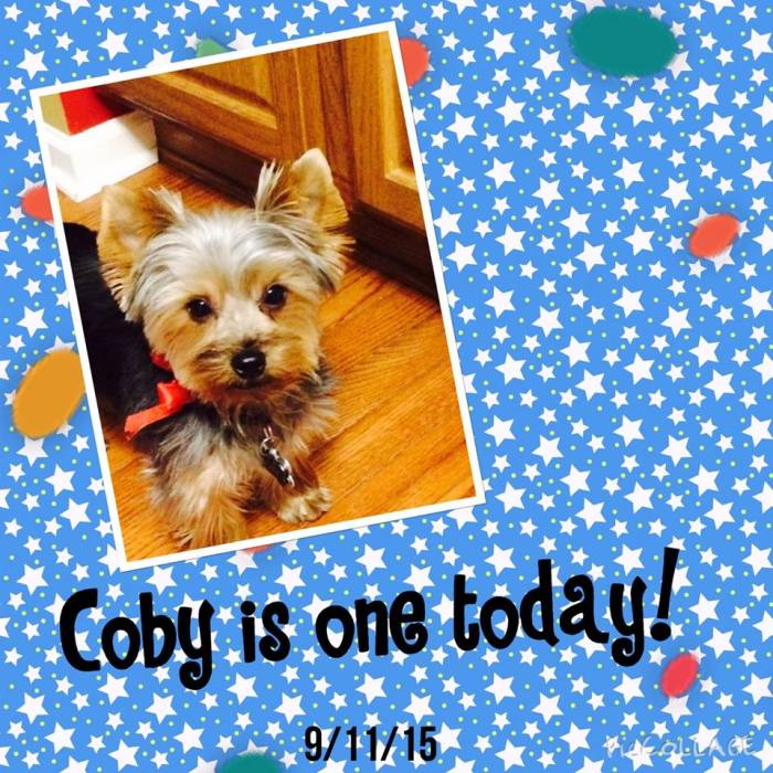 Coby is one