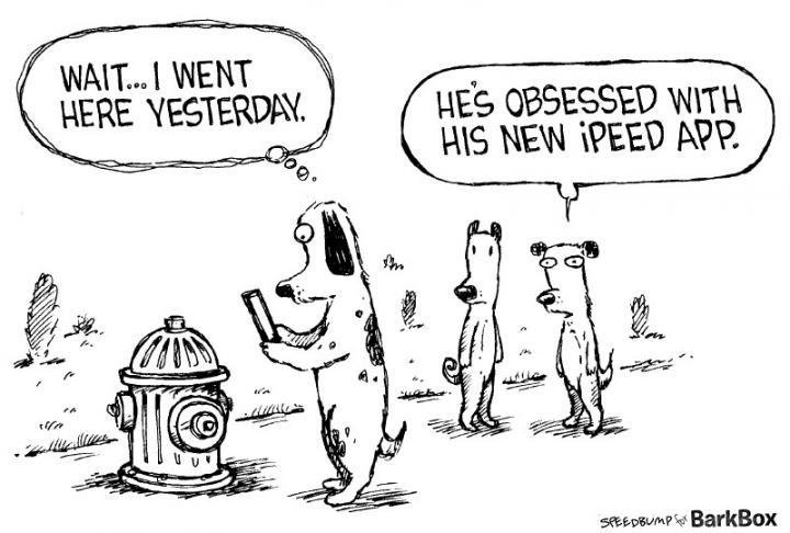 dog-comic