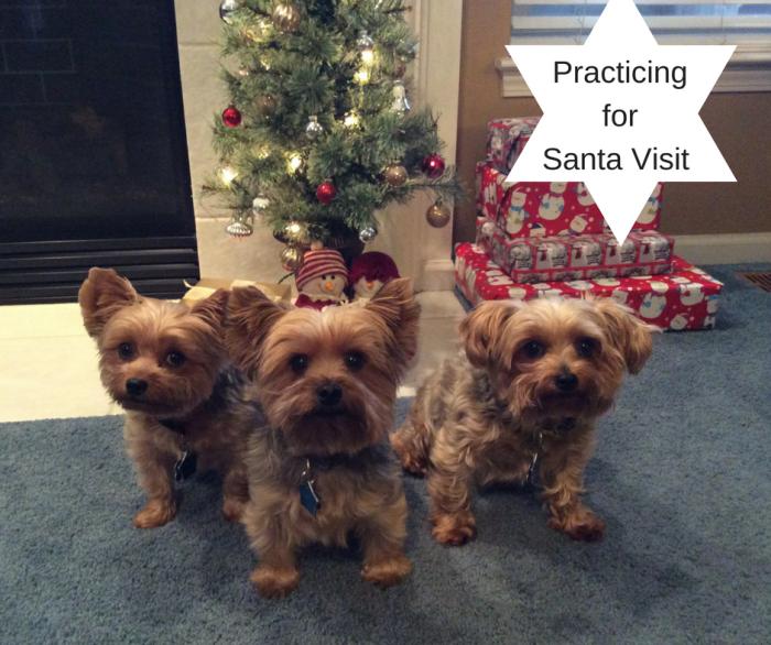practicing-for-santa-visit